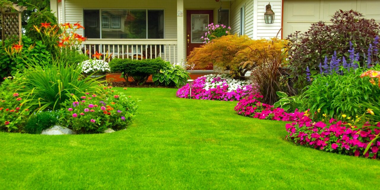 "Prevent High Water Bills with ""Water My Yard"""