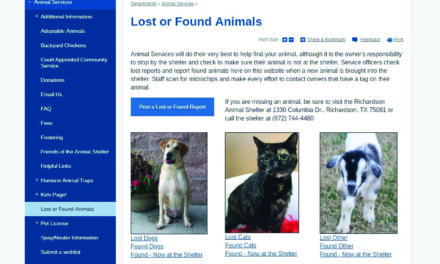 Shelter website aids owners in finding lost pets