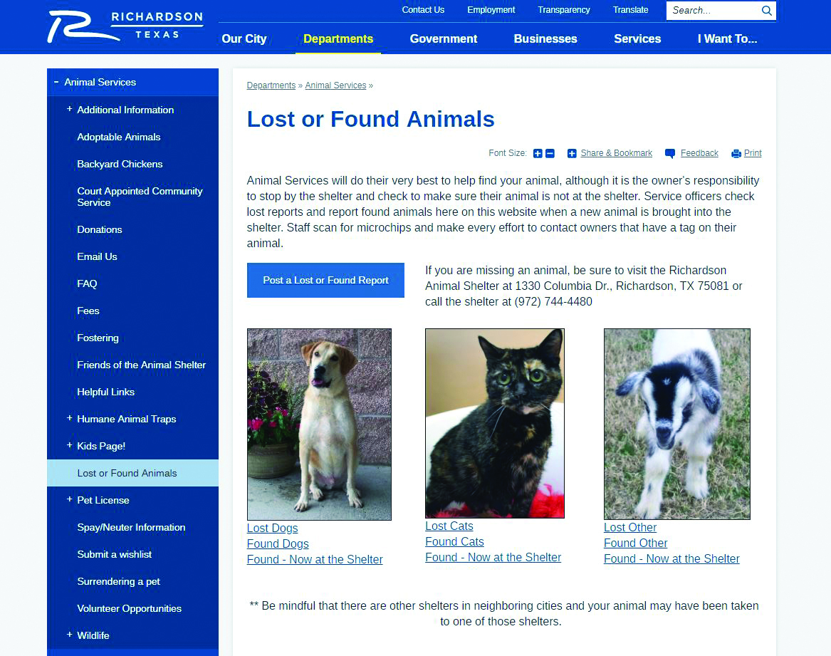 Shelter Website Aids Owners In Finding Lost Pets Richardson Today