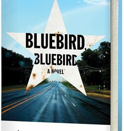 Paint a Bluebird at RROB Activity Aug. 24