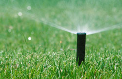 Lawn Watering Options Save Water, Dollars