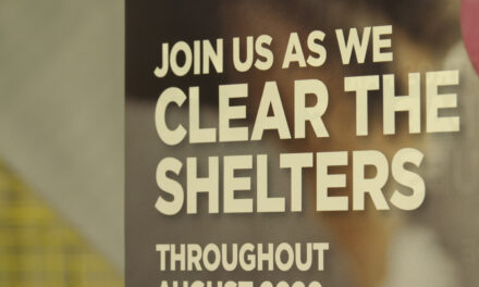 "Shelter Hosts ""Clear the Shelters"" Adoption Drive beginning Aug. 24"